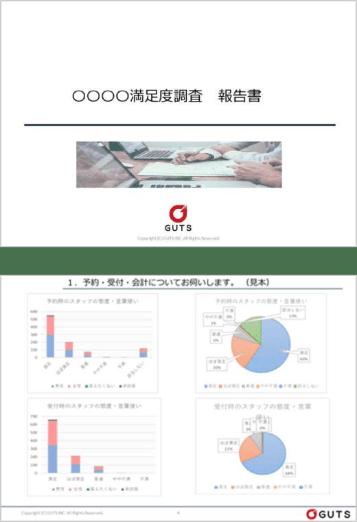 報告書のイメージ図